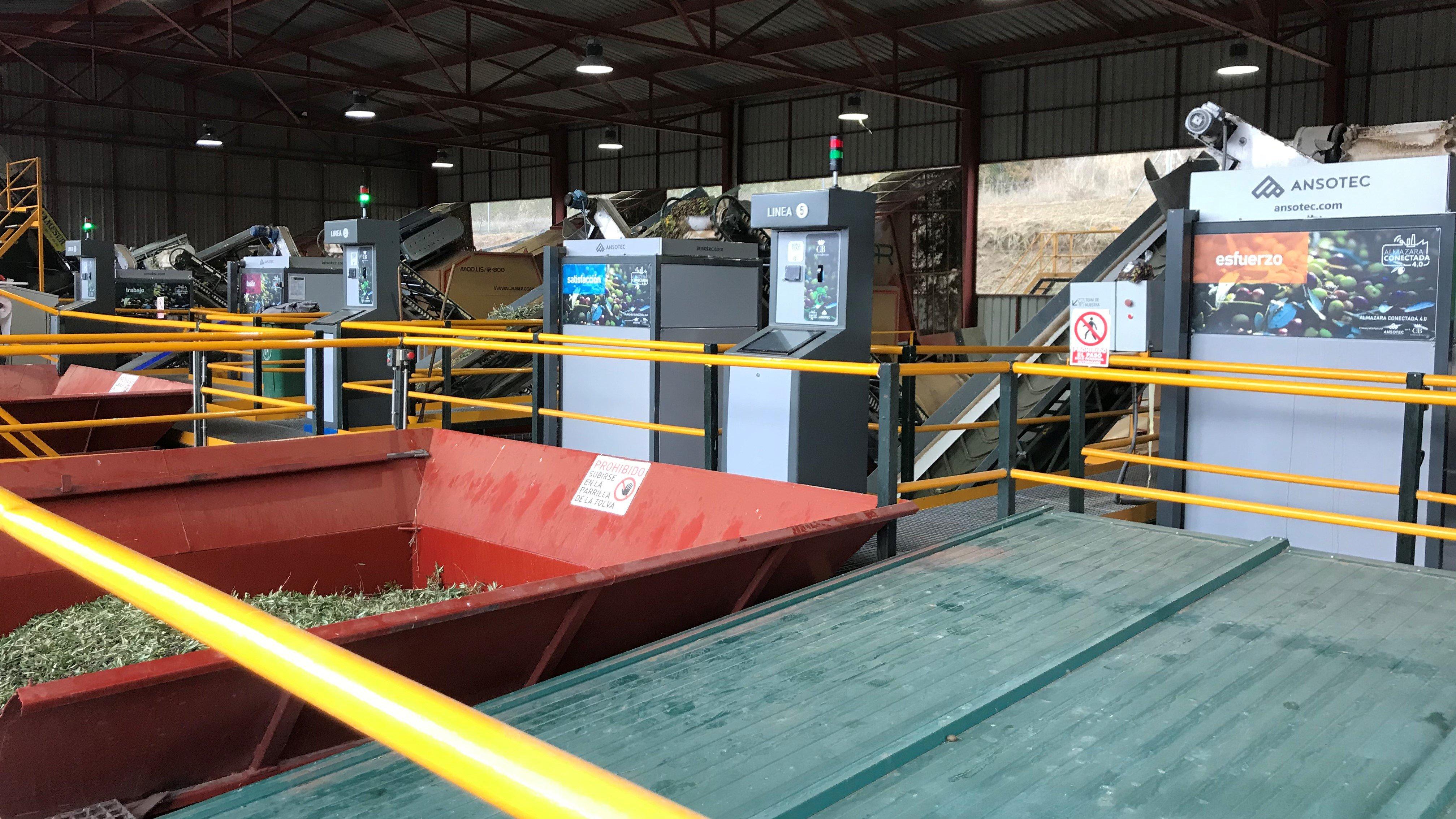 Společnost vyrábějící olivový olej zlepšuje své výrobní kapacity