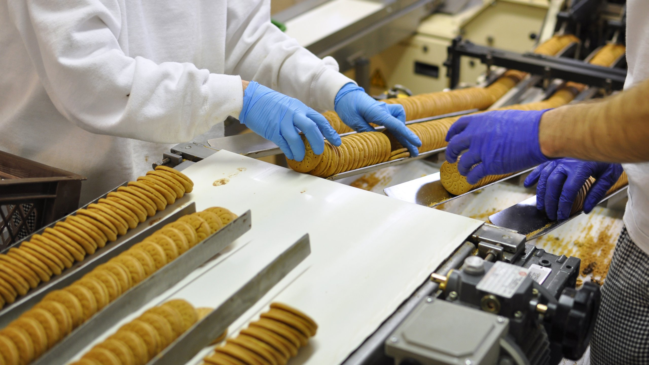Fliessbandarbeit Lebensmittelindustrie / assembly line work