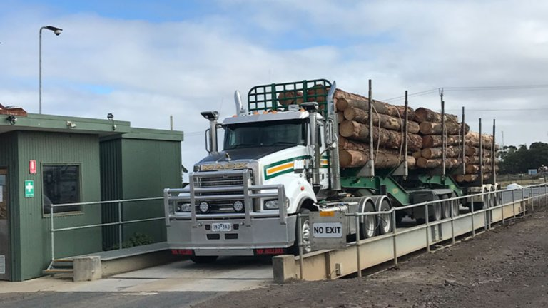 Transport truck hauling logs going through weigh station