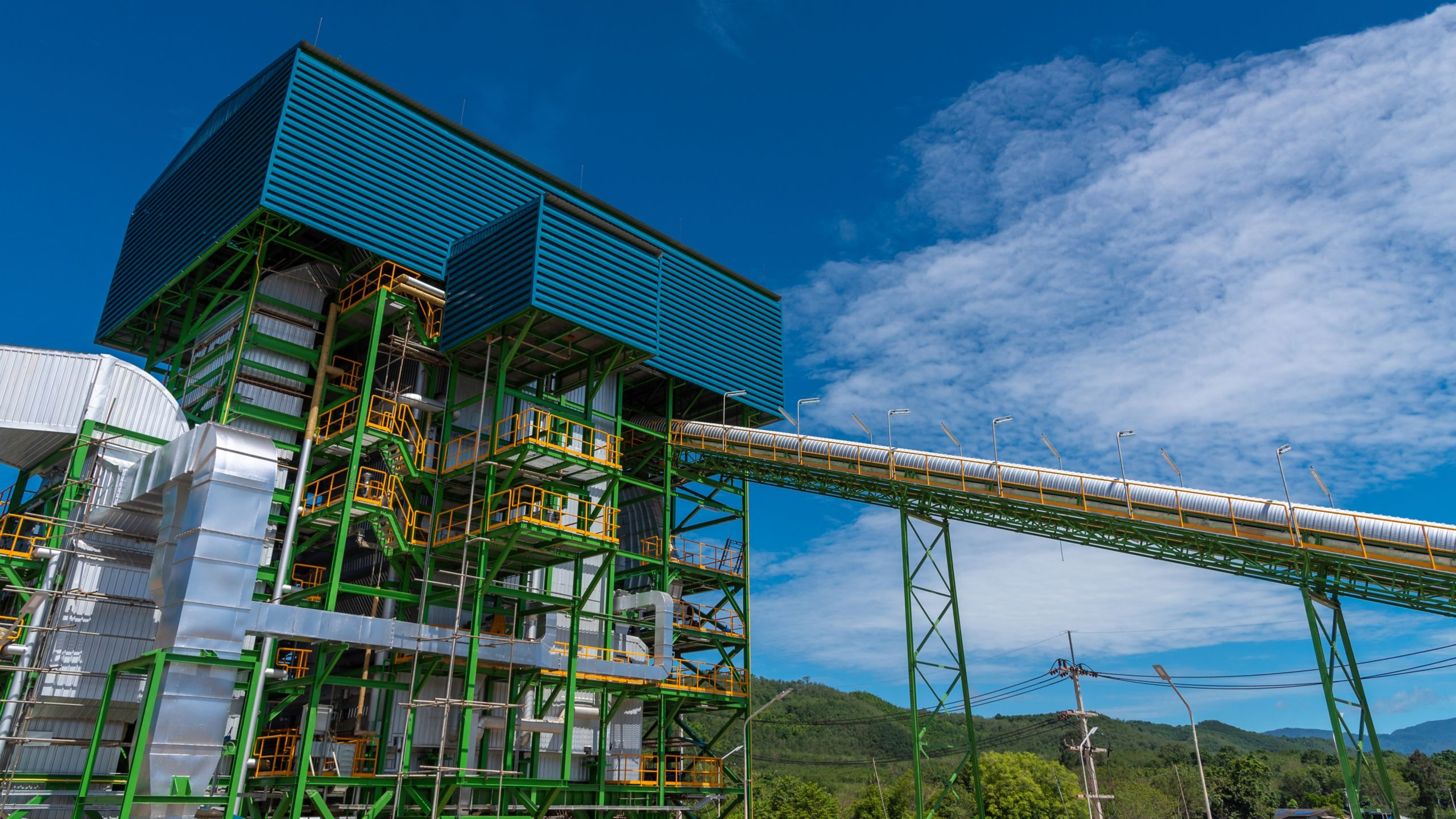 Biomass Power Generation