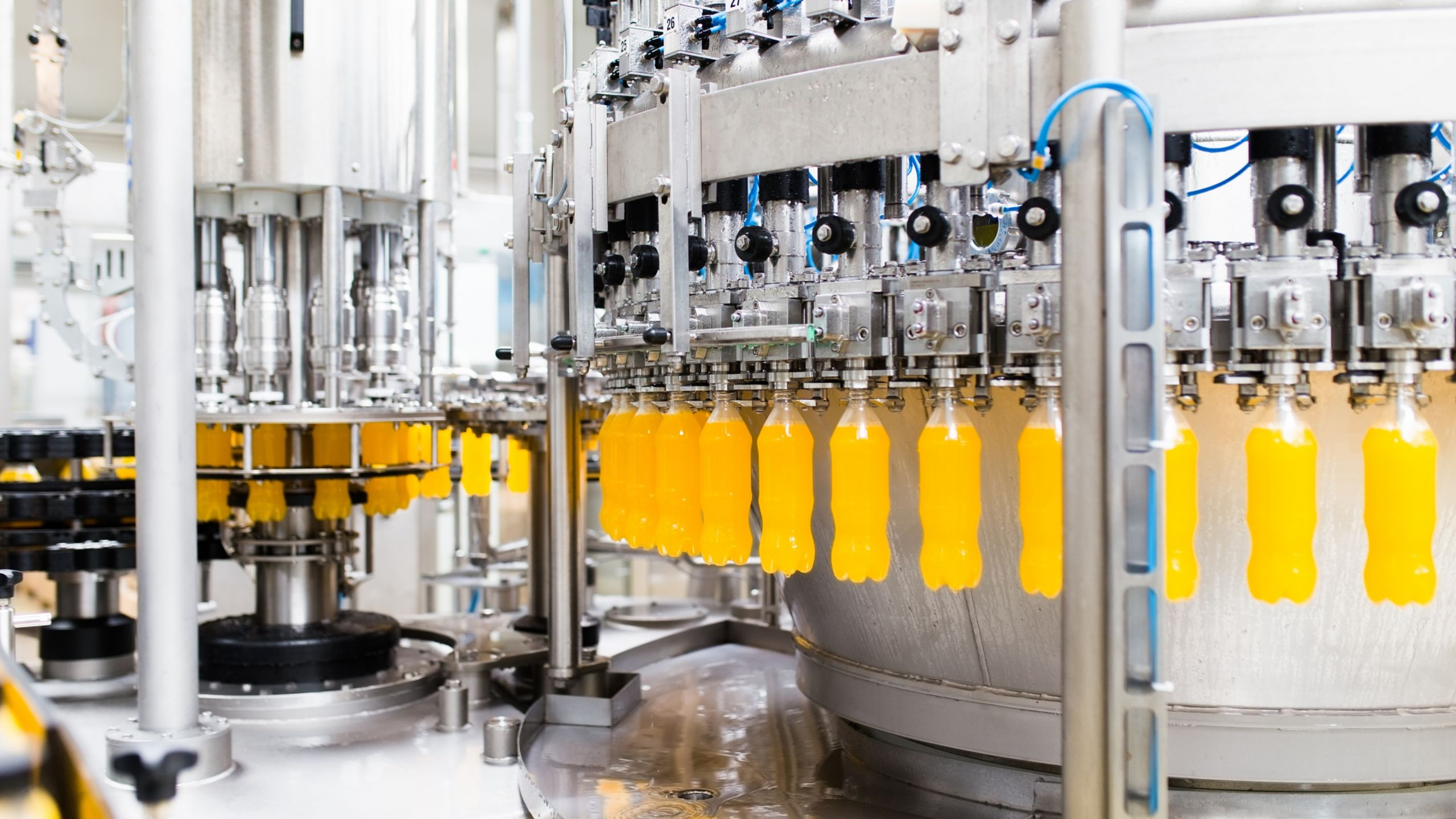 Beverage manufacturing facility displaying the automated process of filling bottles