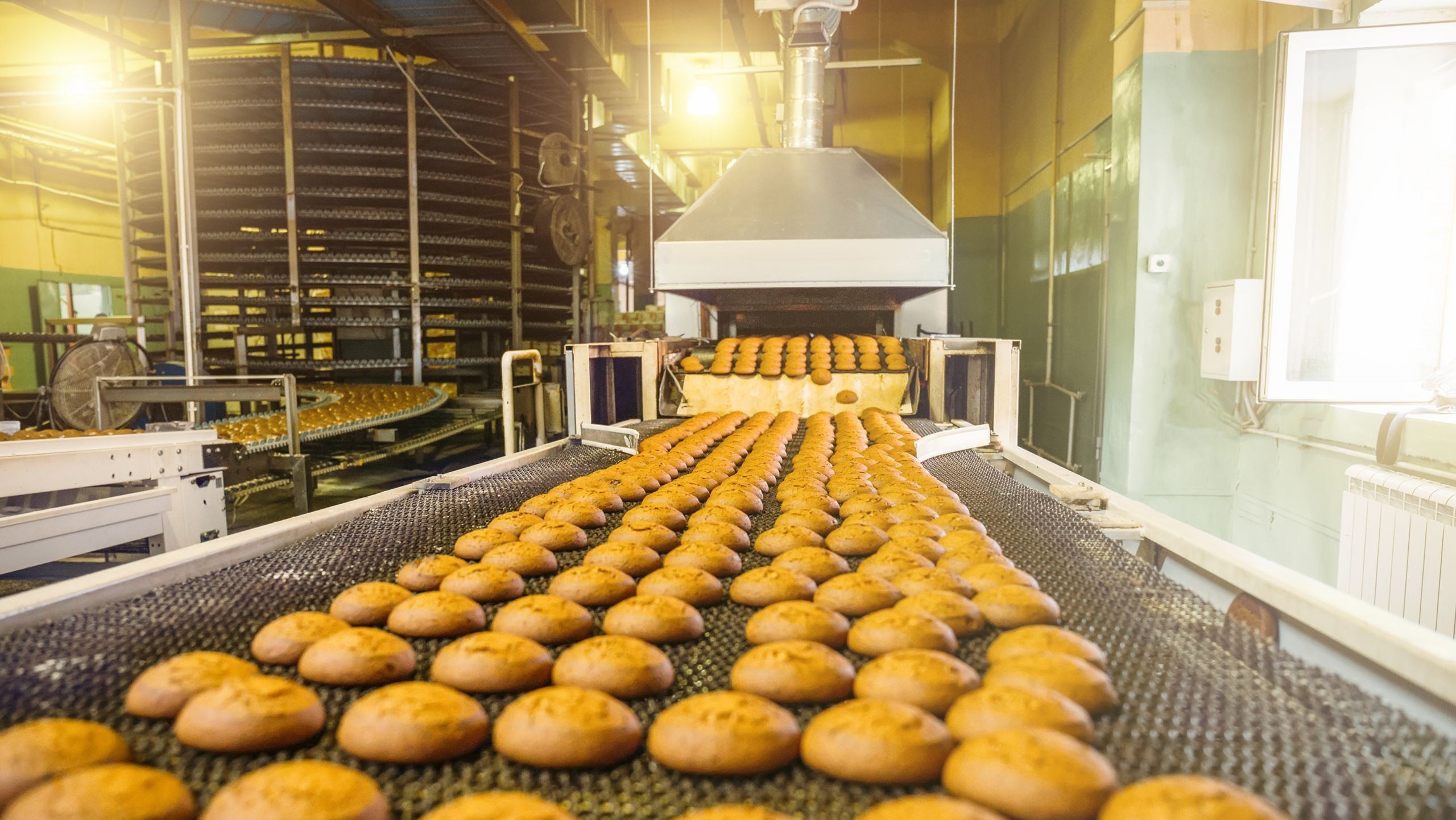 Food and Beverage Manufacturing Automation and Control Systems | Rockwell  Automation